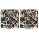 Рогожка Фрэндс (Friends), ширина 140 см