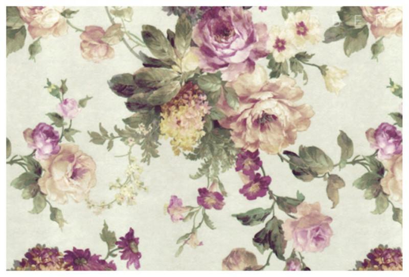 Arcadia_Rose