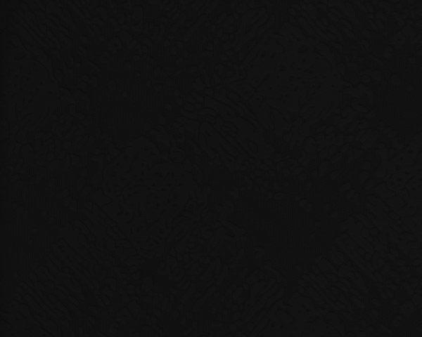 ECLIPSE_BLACK