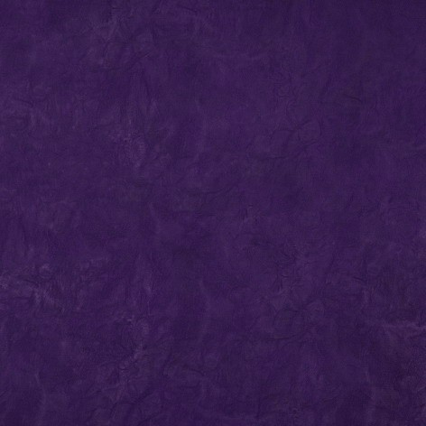 polaris_violet