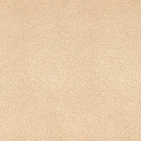Vegas_Light_Beige