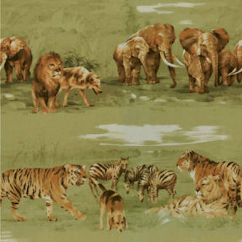 safari01
